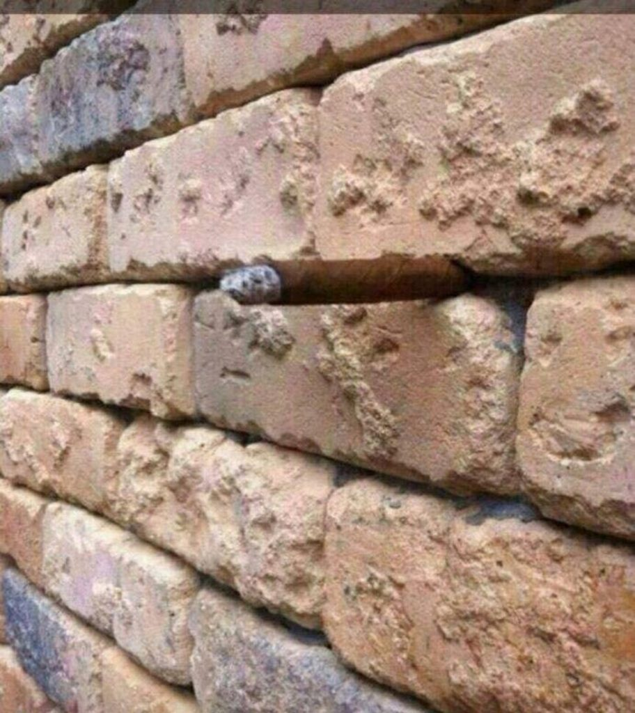 Optical Illusions That Will Blow Your Mind